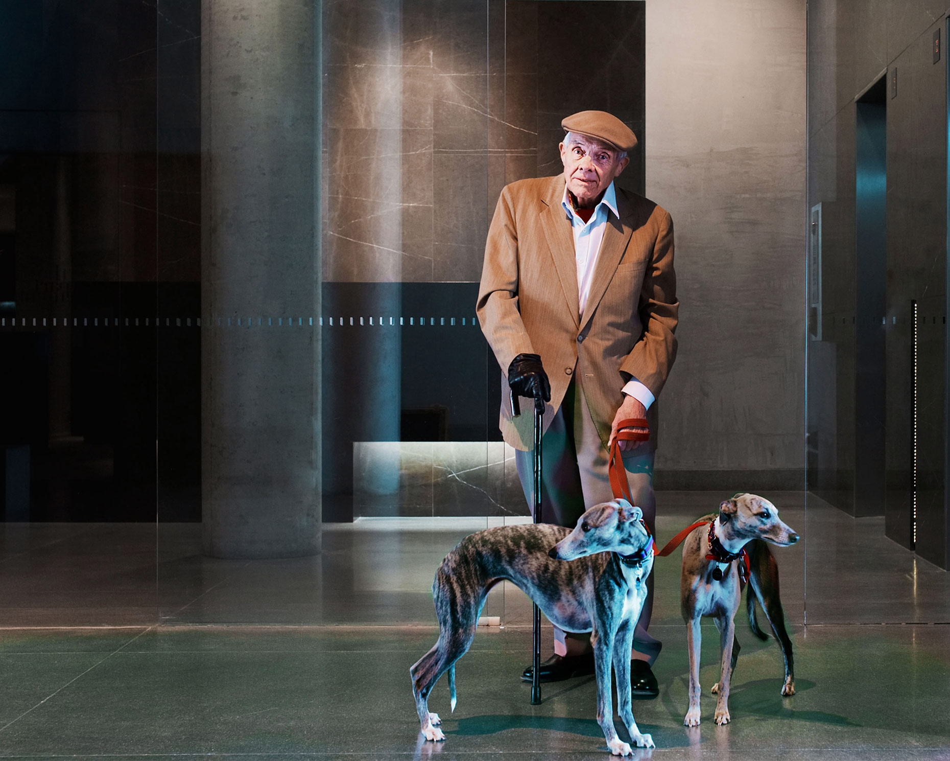 New Acton Pensioner and dogs